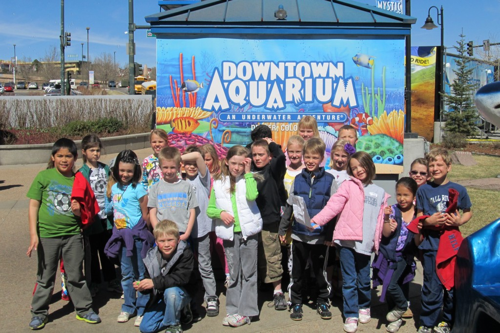 Field Trip to the Denver Aquarium